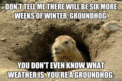 groundhog-day-meme_0