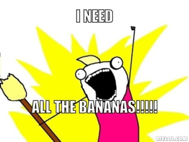 resized_all-the-things-meme-generator-i-need-all-the-bananas-5368a4